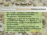 the great toe2