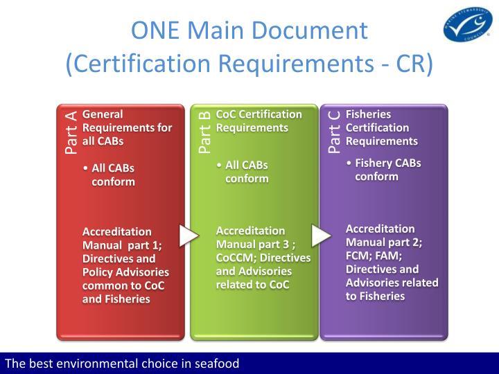 ONE Main Document