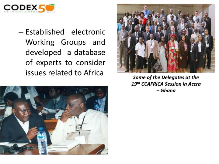 Established electronic Working Groups and developed  a database of experts to consider issues related to Africa
