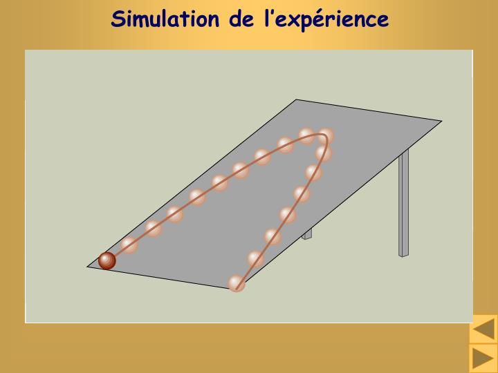 Simulation de l'expérience