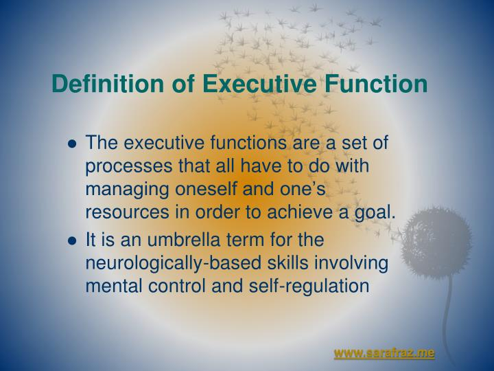 Definition of executive function