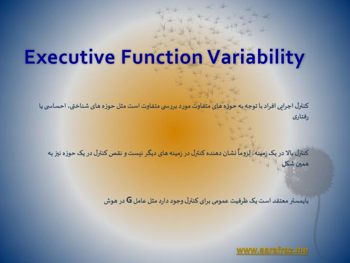 Executive Function Variability