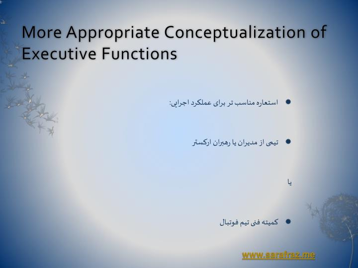 More Appropriate Conceptualization of Executive Functions