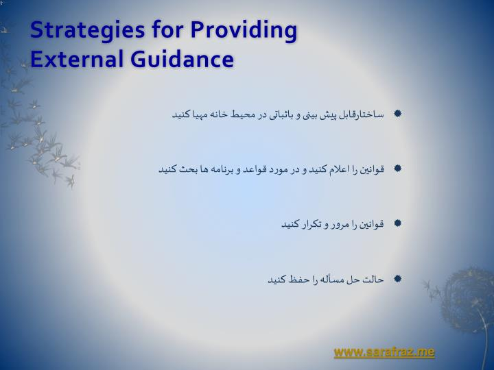 Strategies for Providing                          External Guidance