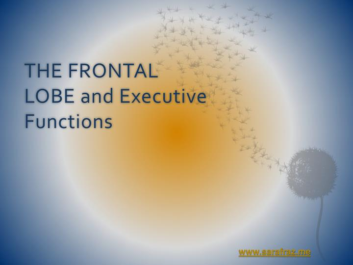 THE FRONTAL LOBE and Executive Functions