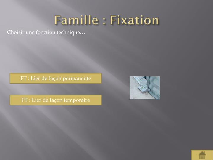 Famille : Fixation