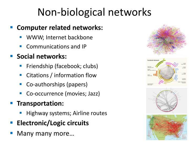 Non-biological networks