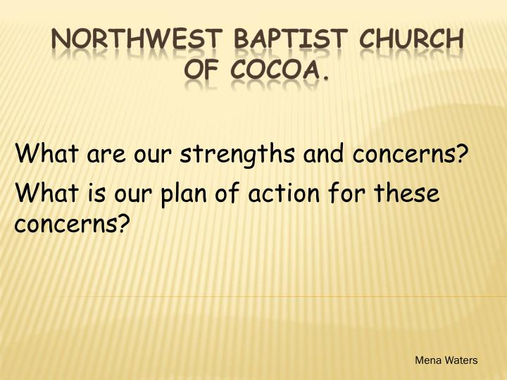 What are our strengths and concerns what is our plan of action for these concerns