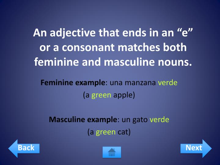 "An adjective that ends in an ""e"" or a consonant matches both feminine and masculine nouns."