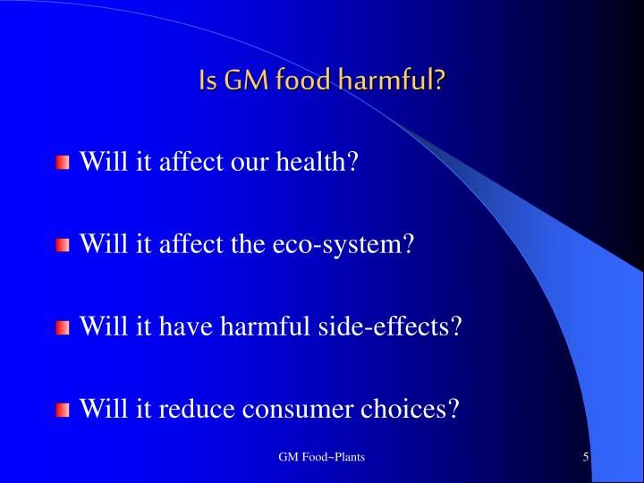 Is GM food harmful?