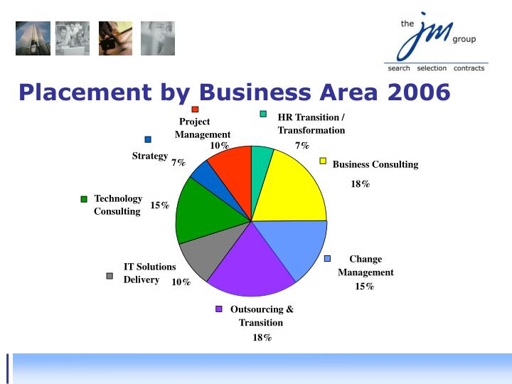 Placement by Business Area 2006