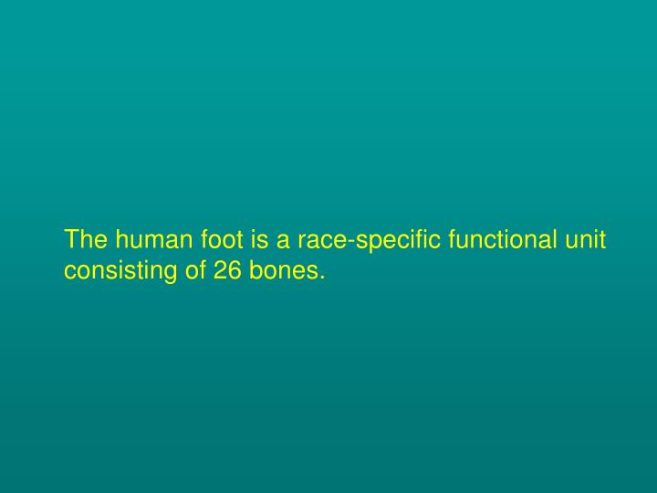 The human foot is a race-specific functional unit consisting of 26 bones.