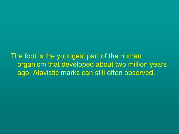 The foot is the youngest part of the human organism that developed about two million years ago. Atavistic marks can still often observed.