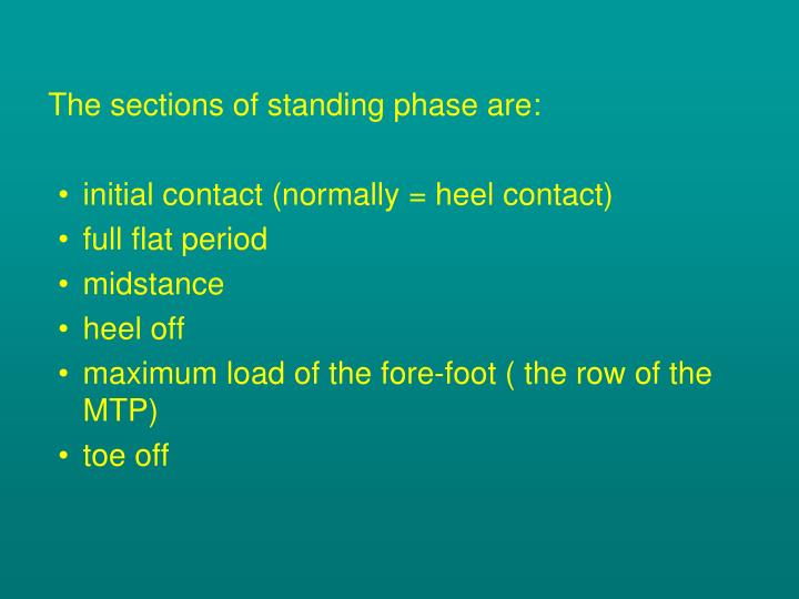 The sections of standing phase are