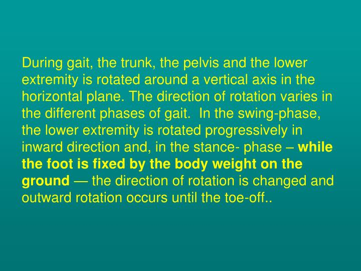 During gait, the trunk, the pelvis and the lower extremity is rotated around a vertical axis in the horizontal plane. The direction of rotation varies in the different phases of gait.  In the swing-phase, the lower extremity is rotated progressively in inward direction and, in the stance- phase –
