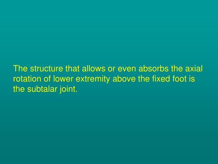The structure that allows or even absorbs the axial rotation of lower extremity above the fixed foot is the