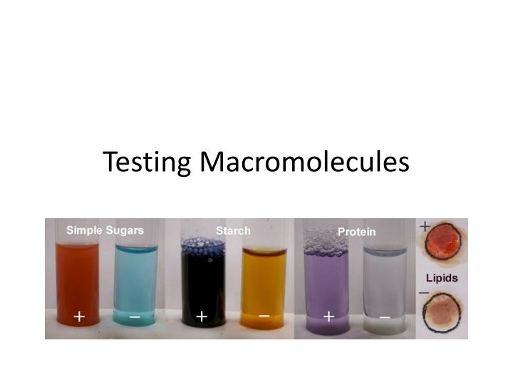 testing macromolecules Start studying testing for macromolecules learn vocabulary, terms, and more with flashcards, games, and other study tools.