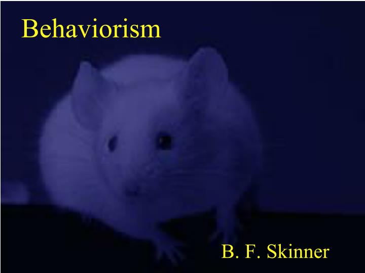 behaviorism n.