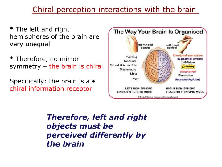 Chiral perception interactions with the brain