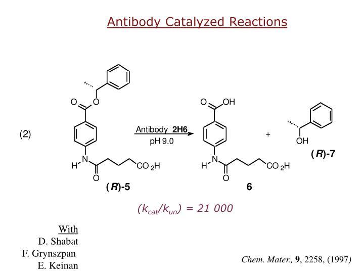 Antibody Catalyzed Reactions