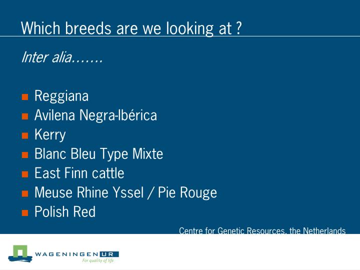 Which breeds are we looking at ?