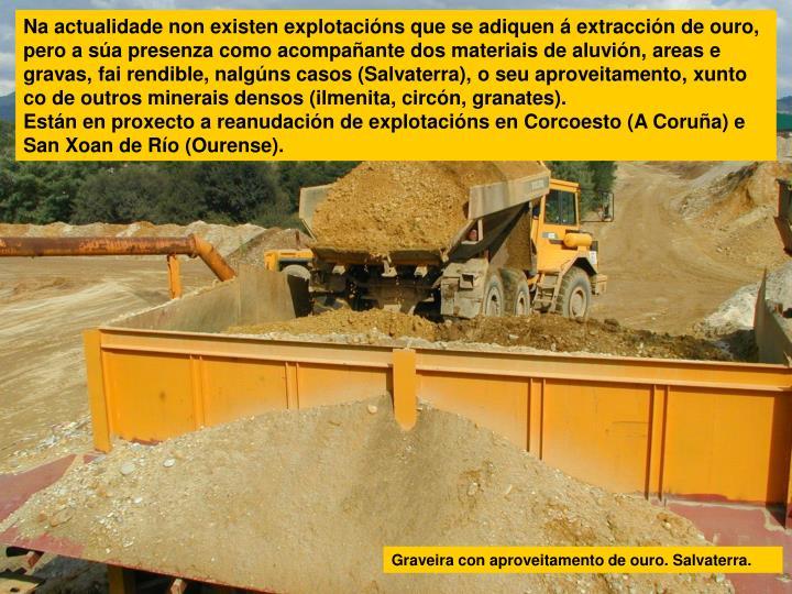 Na actualidade non existen explotacións que se adiquen á extracción de ouro, pero a súa presenza como acompañante dos materiais de aluvión, areas e gravas, fai rendible, nalgúns casos (Salvaterra), o seu aproveitamento, xunto co de outros minerais densos (ilmenita, circón, granates).