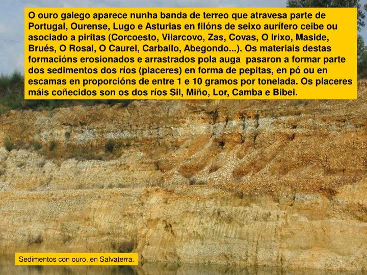O ouro galego aparece nunha banda de terreo que atravesa parte de Portugal, Ourense, Lugo e Asturias en filóns de seixo aurífero ceibe ou asociado a piritas (Corcoesto, Vilarcovo, Zas, Covas, O Irixo, Maside, Brués, O Rosal, O Caurel, Carballo, Abegondo...). Os materiais destas formacións erosionados e arrastrados pola auga  pasaron a formar parte dos sedimentos dos ríos (placeres) en forma de pepitas, en pó ou en escamas en proporcións de entre 1 e 10 gramos por tonelada. Os placeres máis coñecidos son os dos ríos Sil, Miño, Lor, Camba e Bibei.