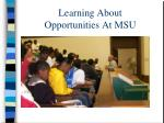 learning about opportunities at msu