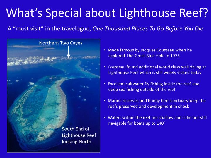 What's Special about Lighthouse Reef?