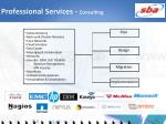 professional services consulting