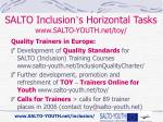salto inclusion s horizontal tasks www salto youth net toy