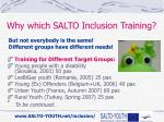 why which salto inclusion training1