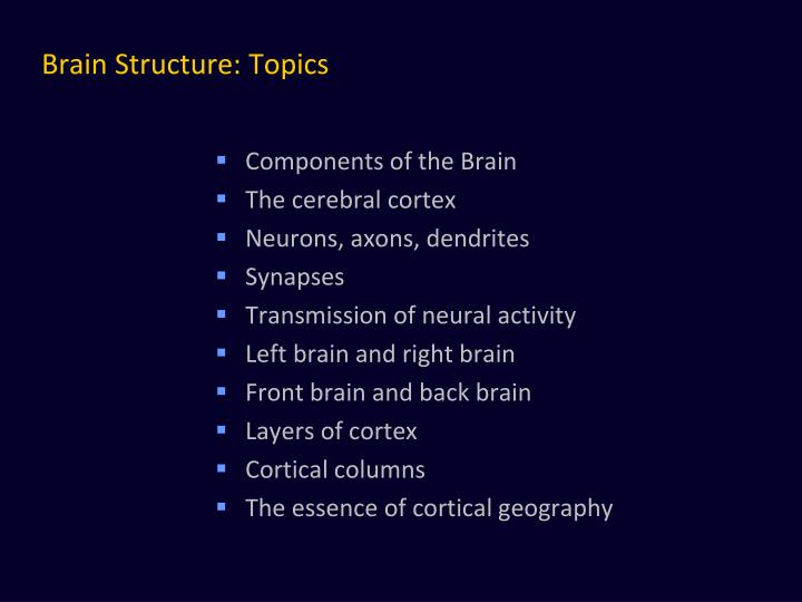 Brain structure topics