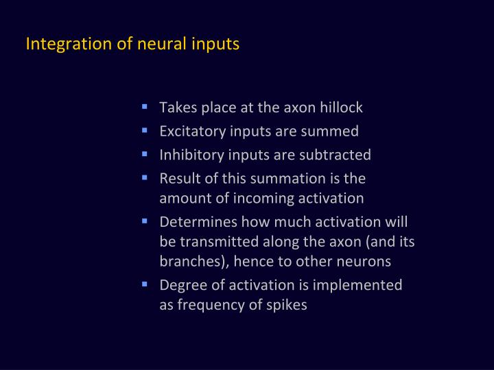 Integration of neural inputs