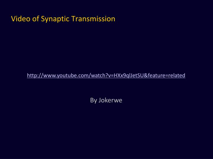 Video of Synaptic Transmission