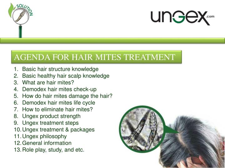 AGENDA FOR HAIR MITES TREATMENT
