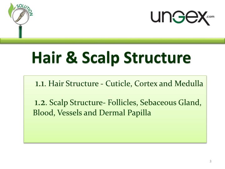 Hair & Scalp Structure
