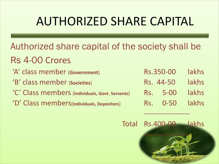 AUTHORIZED SHARE CAPITAL