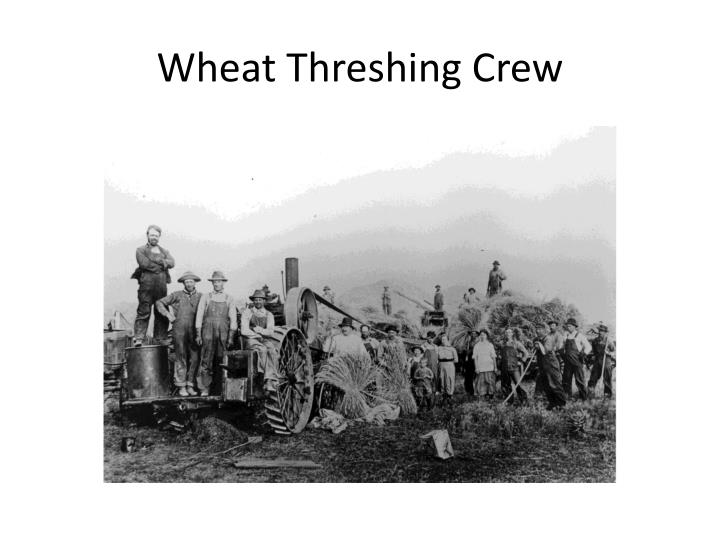 Wheat threshing crew