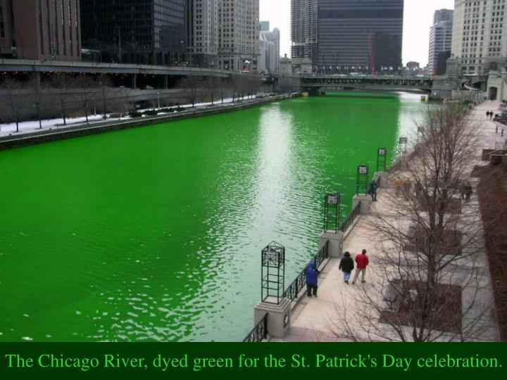 The Chicago River, dyed green for the St. Patrick's Day celebration.