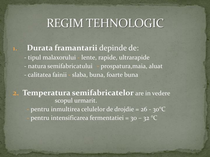 REGIM TEHNOLOGIC