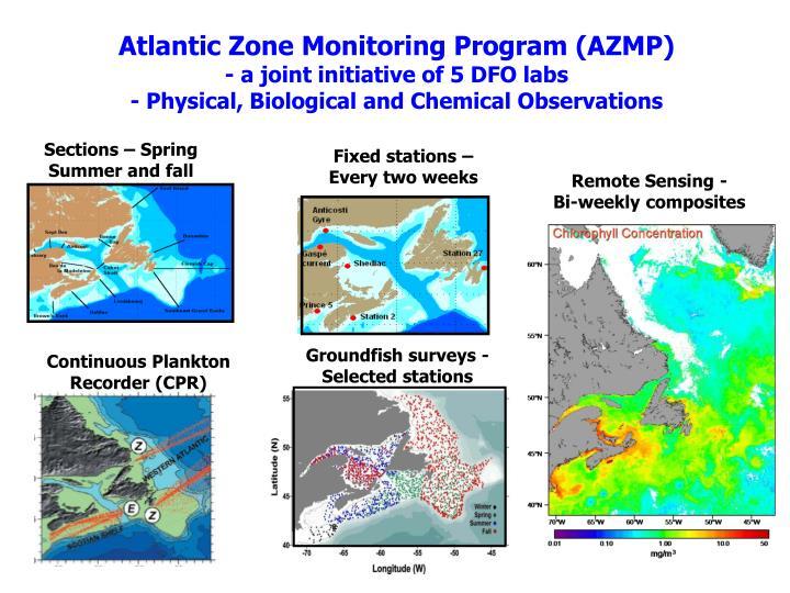 Groundfish surveys - Selected stations