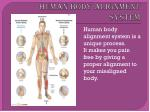 human body alignment system