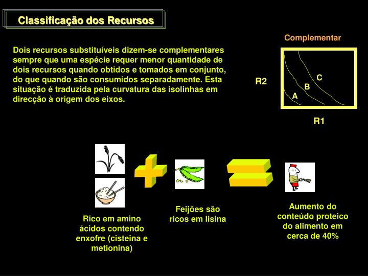 Classificação dos Recursos