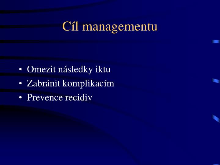 Cíl managementu