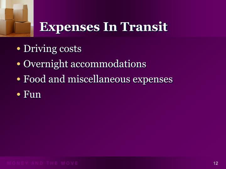 Expenses In Transit