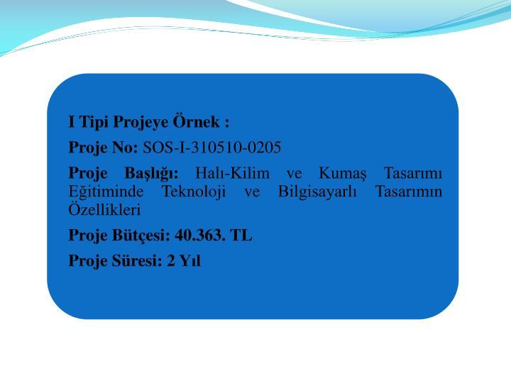 I Tipi Projeye Örnek :