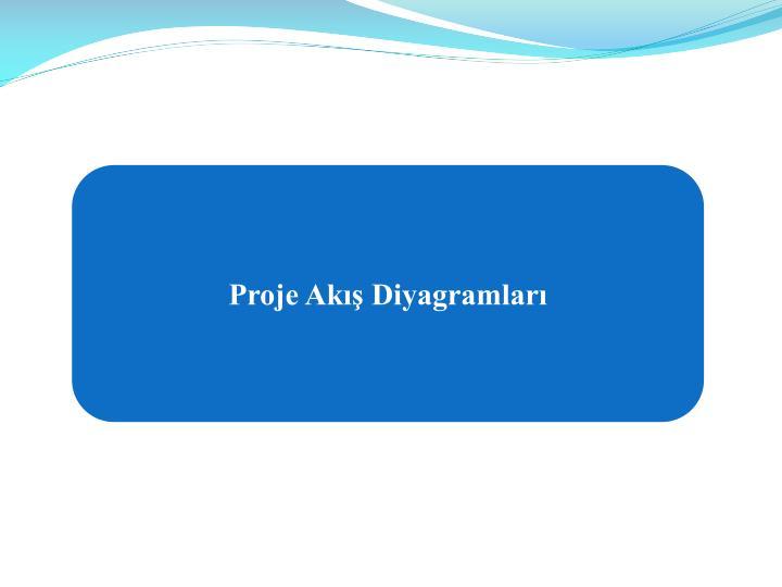 Proje Akış Diyagramları