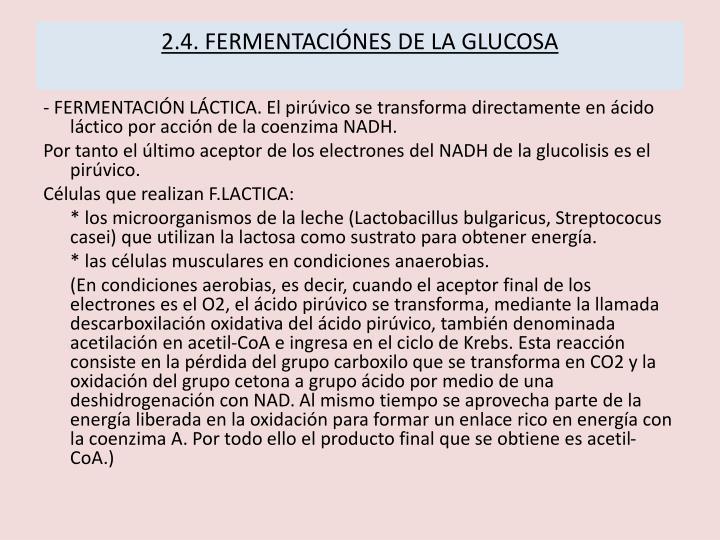 2.4. FERMENTACIÓNES DE LA GLUCOSA