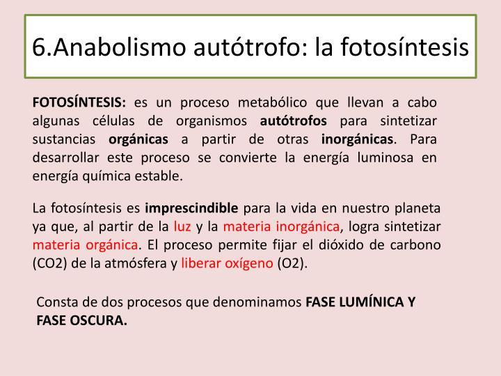 6.Anabolismo autótrofo: la fotosíntesis